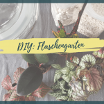 DIY Flaschengarten